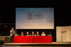 MED Convetion CISE Febbario 2019 (4)
